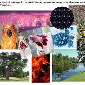 Phenomenon Of Nature Fashion Designs Portfolio Beth Bell